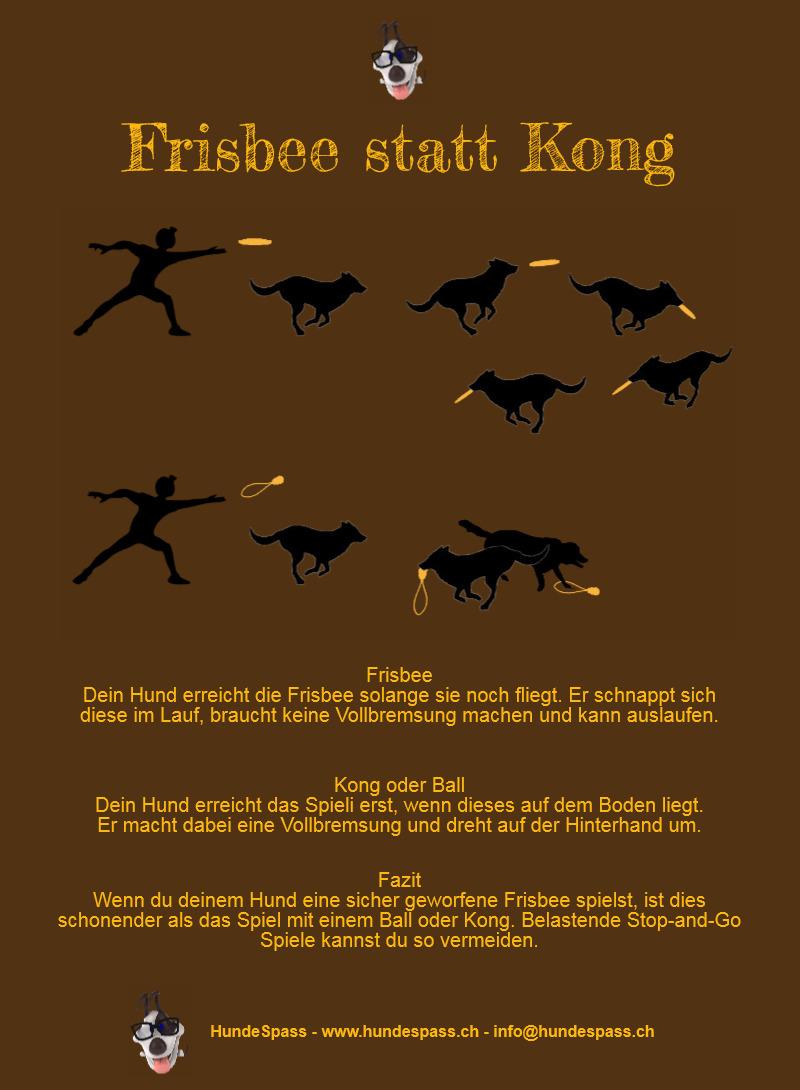 Frisbee statt Kong