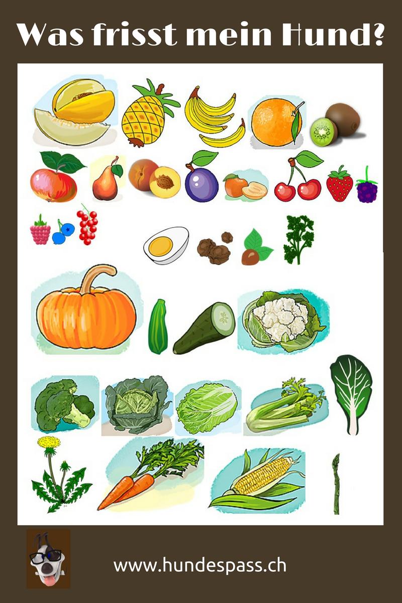 Gemüse und Früche für den Hund