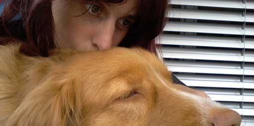 Mensch küsst Hund