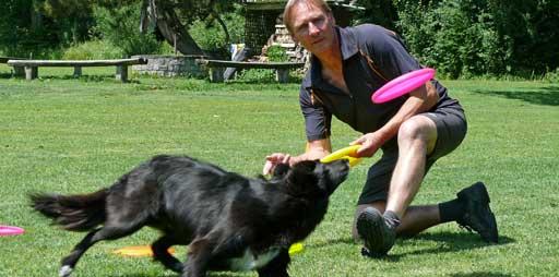 Mann spielt mit Hund Frisbee