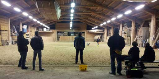 Hundefrisbee Training in der Gertau