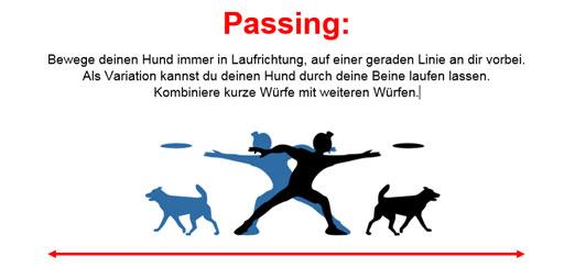 Grafik zum Passing im Dogfrisbee