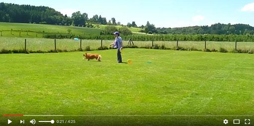 Sandra spielt Hundefrisbee mit Chetana im Garten