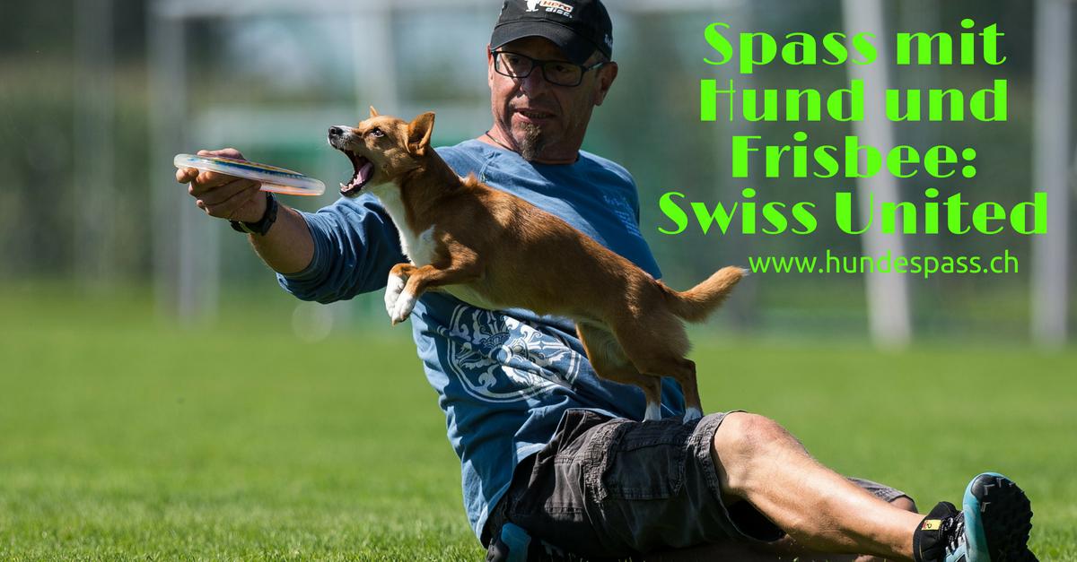 Caipi springt Sandro übers Bein und fängt eine Frisbee